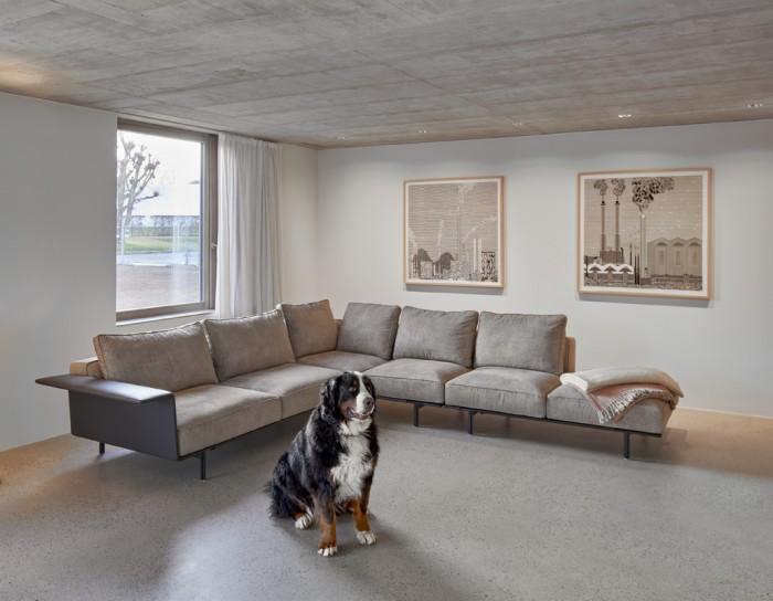 Villas mitoyennes béton counson architectes chien
